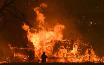 Φωτιές στην Αυστραλία: Δεν θα βρέξει και δεν θα πέσει η θερμοκρασία τους επόμενους μήνες