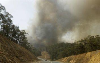 Αυστραλία: Δύο νεκροί στο νησί του Καγκουρό από τις πυρκαγιές
