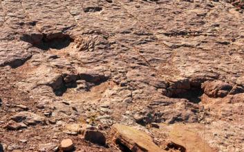 Τι αποκάλυψαν για τους δεινόσαυρους τα μυστηριώδη αποτυπώματά τους στο νερό