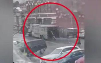 Οι αγελάδες το έσκασαν και ο απρόσεκτος οδηγός του φορτηγού δεν κατάλαβε τίποτα