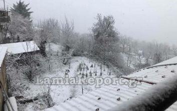 Χιονίζει στη Φθιώτιδα, απαραίτητες οι αλυσίδες στον δρόμο προς Καρπενήσι