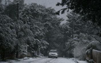 Κακοκαιρία στην Αττική: Χιόνια σε Πάρνηθα, Εκάλη, Πεντέλη, Άγιο Στέφανο, Υμηττό