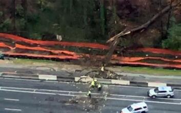 Βίντεο με δέντρο να πέφτει πάνω σε αυτοκίνητο εν κινήσει στην Ατλάντα