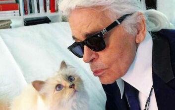 Μέσα στη χλιδή ζει η γάτα του Καρλ Λάγκερφελντ - Έχει οικονόμο και ιδιωτικό σεφ