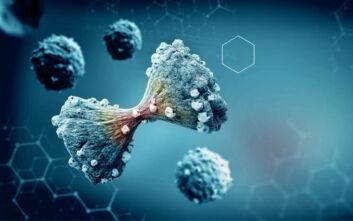 Καρκίνος τραχήλου της μήτρας: Τεστ παπ και εμβολιασμός θα εξαλείψουν μελλοντικά τη νόσο