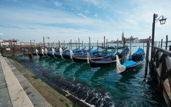 UPDATE: Δεν εμφανίστηκαν δελφίνια στα κανάλια της Βενετίας εξαιτίας της καραντίνας