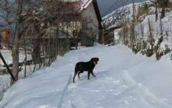 Σάκης Αρναούτογλου: Ο χάρτης του χιονιά από σήμερα Παρασκευή έως την Τρίτη