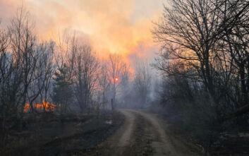 Υπό μερικό έλεγχο τέθηκε η φωτιά στην Κάτω Αχαΐα