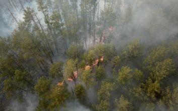 Κατασβέστηκε η φωτιά κοντά στο πρώην πυρηνικό εργοστάσιο του Τσερνόμπιλ