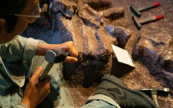 Οι παλαιοντολόγοι βρήκαν το «πιο επικίνδυνο μέρος» στην ιστορία της Γης