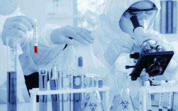 Κορονοϊός: Πειραματικό εμβόλιο προστάτευσε μαϊμούδες από τον ιό