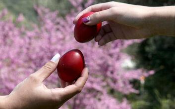 Τριακόσια εκατομμύρια κόκκινα αβγά τσουγκρίζονται την περίοδο του Πάσχα στην Ελλάδα