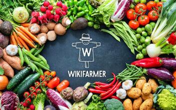 Wikifarmer: Ο «Έλληνας αγρότης» που κατακτά τον κόσμο φέρνει τα προϊόντα του στην πόρτα σου