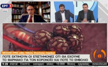 Νίκος Σύψας: Θα κάνουμε καλοκαιρινά μπάνια αλλά με ασφάλεια - Πότε θα ληφθεί η απόφαση για τα δημοτικά