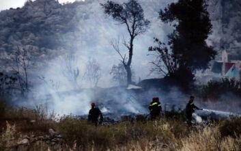Φωτιά στις Κεχριές: Εκκενώνεται η κατασκήνωση