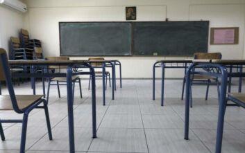Δημοσκόπηση Open: 7 στους 10 Έλληνες πιστεύουν ότι δεν έπρεπε να ανοίξουν τα σχολεία - Πόσο εμπιστεύονται Τσιόδρα και Χαρδαλιά