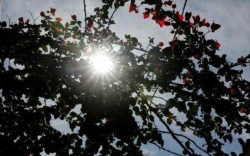 Καιρός: Πρωτομαγιά με θερμοκρασίες που θυμίζουν καλοκαίρι