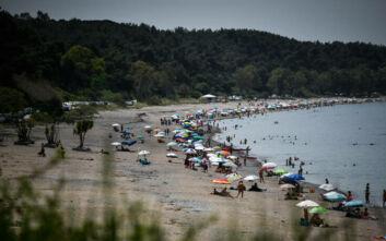 Άδωνις Γεωργιάδης: Αυτό που έγινε στις παραλίες, ήταν η καλύτερη διαφήμιση για την Ελλάδα