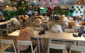 Εστιατόριο στην Ιαπωνία «προσέλαβε» λούτρινα για να τηρηθούν οι αποστάσεις στα τραπέζια