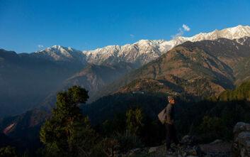 Το Νεπάλ απαγόρευσε τη συγκομιδή του «Βιάγκρα των Ιμαλαΐων» λόγω κορονοϊού