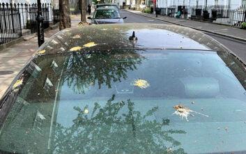 Πώς να προστατεύσετε το αυτοκίνητό σας από τις κουτσουλιές