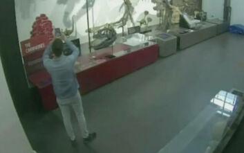 Γερμανός φοιτητής πέρασε στα αλήθεια την ταινία «Μια Νύχτα στο Μουσείο»