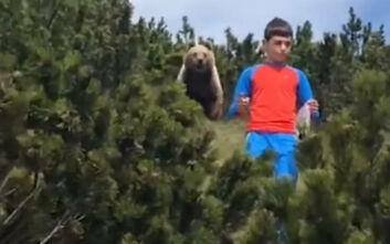 Η τρομακτική στιγμή της συνάντησης ενός αγοριού με μία αρκούδα και η ψύχραιμη αντίδραση που τον έσωσε