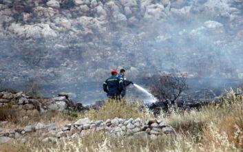 Σύστημα ανίχνευσης για τον έγκαιρο εντοπισμό πυρκαγιών στην Κεντρική Μακεδονία