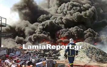Οι πρώτες εικόνες από τη μεγάλη φωτιά στην Αυλίδα - Μαύροι πυκνοί καπνοί παντού