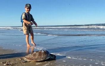 Ο 5χρονος που βοήθησε 3 θαλάσσιες χελώνες να επιστρέψουν στον ωκεανό