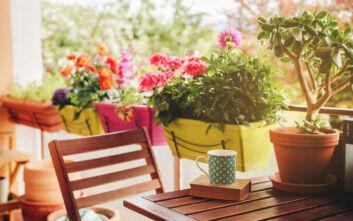 Πώς να μετατρέψετε το μπαλκόνι σας σε μικρό κήπο
