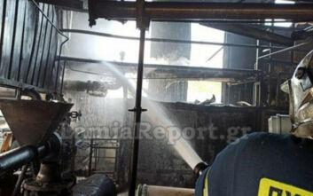 Φωτογραφίες από μεγάλη φωτιά σε εργοστάσιο στην Αυλίδα