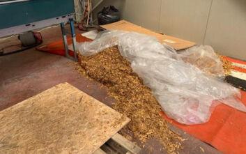 Τρύπα 1 εκατ. ευρώ από εργαστήριο παράνομου καπνού στο Λαύριο