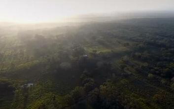 Μεξικό: Ανακαλύφθηκε κτίσμα που ανατρέπει όσα ξέραμε για τον πολιτισμό των Μάγια