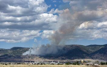 Σε εξέλιξη βρίσκεται η φωτιά στον Ασπρόπυργο – Δεν κινδυνεύει κατοικημένη περιοχή
