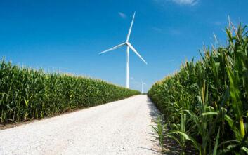 «Ναι» στην πράσινη ενέργεια, αλλά «όχι» στα έργα ΑΠΕ που την παράγουν;