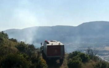 Φωτιά τώρα στη Ζάκυνθο - Βίντεο από το σημείο