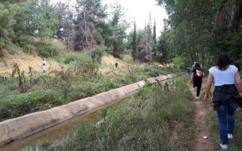 Μια «αγκαλιά» γύρω από την πόλη: Εξόρμηση στη φύση στην περιφερειακή τάφρο της Θεσσαλονίκης