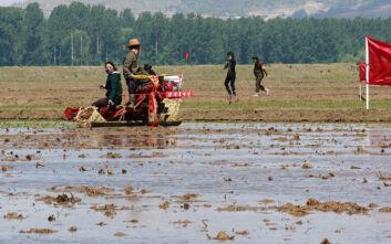 Βόρεια Κορέα: «Οικογένειες τρώνε μόνο 2 φορές τη μέρα ή καταναλώνουν καλαμπόκι»