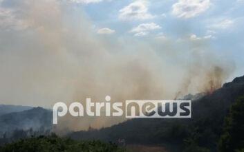 Ηλεία: Πυρκαγιά στο χωριό Σέκουλα