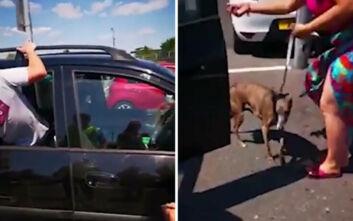 Έσπασαν το παράθυρο ενός αυτοκινήτου για να βγάλουν από μέσα έναν σκύλο που έσκαγε από τη ζέστη