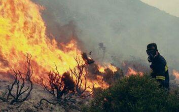 Πυρκαγιά στη Βάρη - Ισχυρές δυνάμεις της Πυροσβεστικής στο σημείο