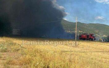 Συναγερμός στην Πυροσβεστική για φωτιά στο Παλιούρι Φθιώτιδας