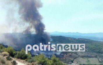 Φωτιά τώρα σε δασική έκταση στον Πύργο Ηλείας