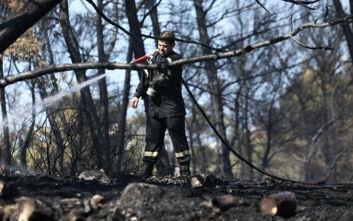 Έσβησε φωτιά που είχε ξεσπάσει μεταξύ δύο χωριών στη Λέσβο