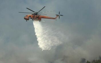 Φωτιά τώρα στην Άνδρο - Καίγεται δασική έκταση
