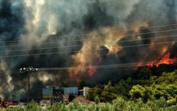 Ανεξέλεγκτη η φωτιά στις Κεχριές: Οι φλόγες έφτασαν σε σπίτι - Ενισχύονται οι δυνάμεις της Πυροσβεστικής