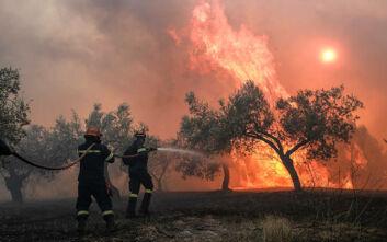 Φωτιά τώρα στο Τρίκορφο Ναυπακτίας – Μεγάλη δύναμη της πυροσβεστικής στο σημείο