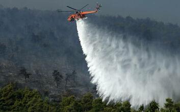 Φωτιά τώρα σε δάσος στη Φωκίδα