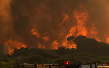 Ανοίγουν και πάλι οι δικογραφίες για τις φωτιές σε Κύθηρα και Μάνη